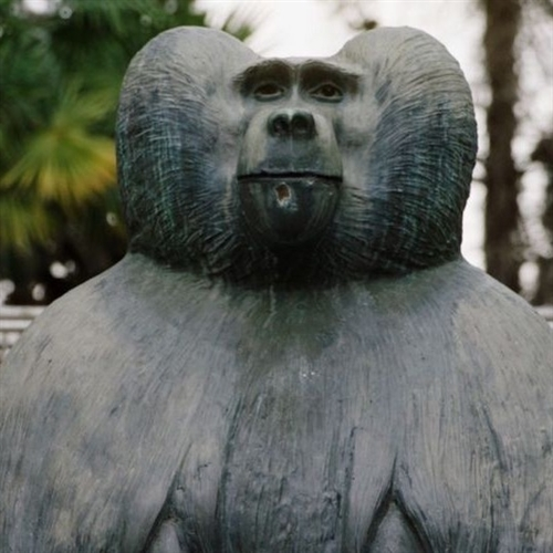 KineDok: Tarzanove semenníky